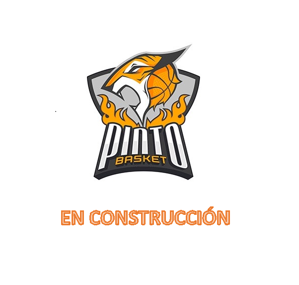 https://pintobasket.com/wp-content/uploads/2019/03/CapturaCONSTRUCCION-e1553171373165.png